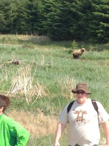 """Be Bear Aware! We survived a """"bear attack"""" when we had to walk past the grizzly to get from the Musher camp to our bus. The first bear sighting of the season."""