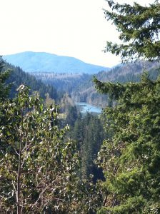 Washington natural beauty